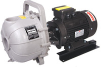 10.7083G Pacer 2 inch Polypropylene electric pump.jpg