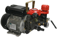 19.215 AR252 electric 230v diaphragm pump .jpg