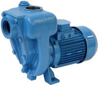 899.EA5V GMP self priming cast iron water pump 230v.jpg