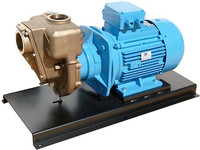 899.EAFR GMP marine bronze electric pump model G3TMK-A-B_11 kW.jpg