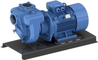 899.EANM GMP cast iron self priming semi trash pump.jpg