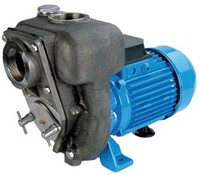 899.EA7G GMP stainless steel self priming pump.jpg