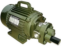 108.FTMB050 RotoFluid 1 inch BSP(F) electric gear pump.jpg